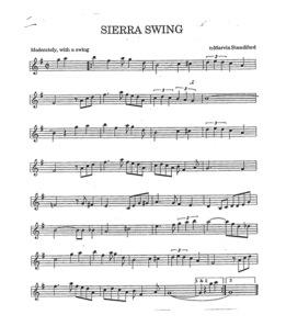 17 Sierra Swing